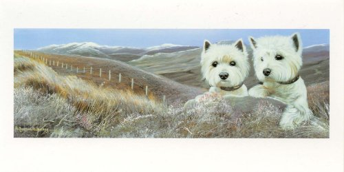 (Winter Heather West Highland Terriers Pollyanna Pickering Slim Christmas Card Pack)