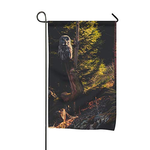 buybuybuysell Decorative Flag Owl Garden Flag for Party Holiday Outdoor -