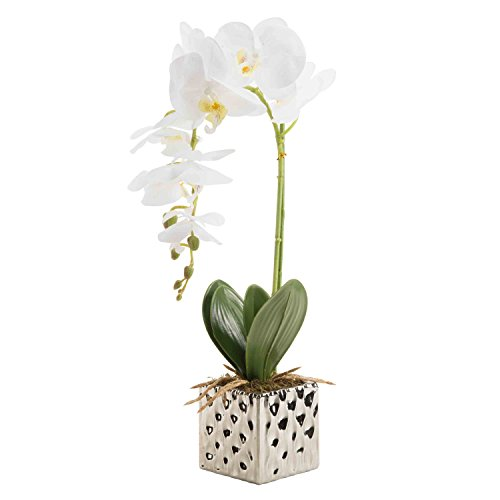 Artificial Phaleanopsis Arrangement with Vase Decorative Orchid Flower Bonsai (White)