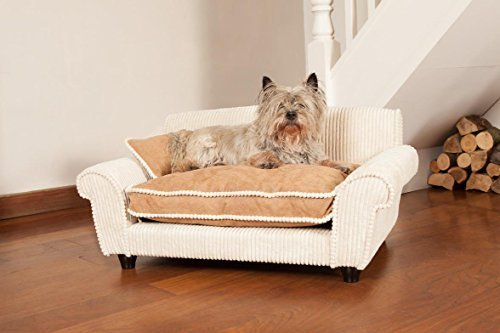Dog-Sofa-Ultra-Plush-Professor-Dog-Bed-Large