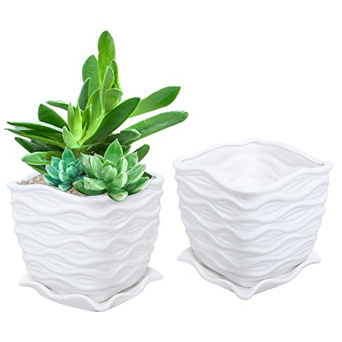 White Ceramic Wave Textured Design Flower Planting Pot/Succelent Planter with Attached Saucer (Ideas Pot Planting Patio For)