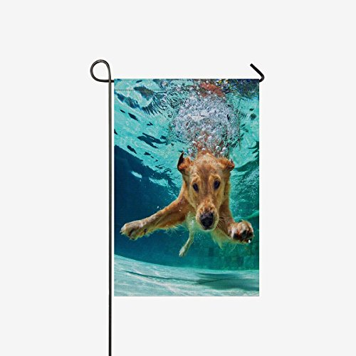 Flag Decorative Funny Labrador Retriever Puppy Dog for Garden and Home Decorations, Polyester Double Sided House Banner 12 x 18 Inches (Without Flagpole) (Retriever House Flag)