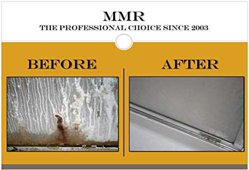 Professional 1-gal. Instant Mold and Mildew Stain Remover (4-Pack) by MMR Fast Mold Removal (Image #4)