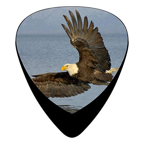 Eagle Water Guitar Picks Celluloid 12 Pack Shape For Acoustic Guitar Mandolin Electric Guitar And Bass