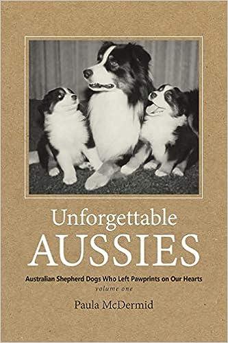 Unforgettable Aussies Australian Shepherd Dogs Who Left