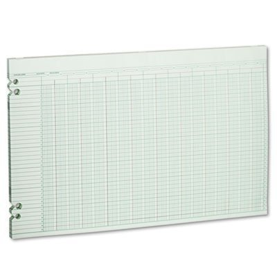 Wilson Jones® Accounting Sheets, 30 Columns, 11 x 17, 100 Loose Sheets/pack, GN by Wilson Jones®
