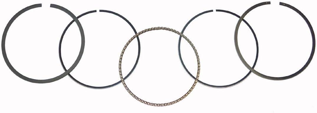 300 Lakota 1995-2003 300 Prairie 1999-2002 Part# 51-255-04 Piston Rings Kawasaki 300 Bayou 1988-2004 76.25 mm