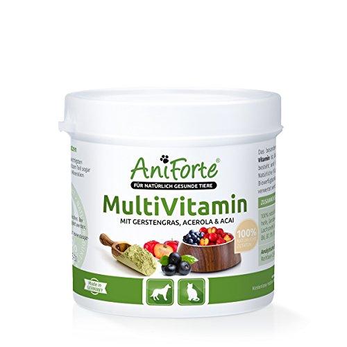 AniForte Natürliches Multivitamin 100g - Naturprodukt für Hunde und Katzen