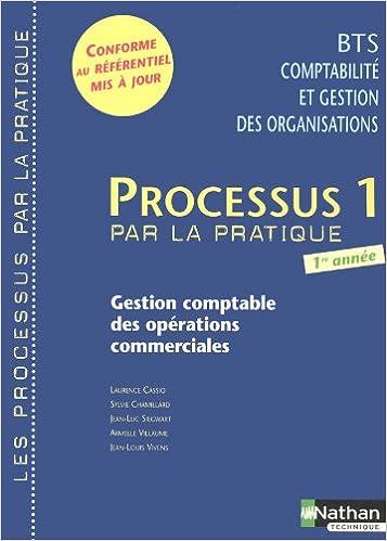 Téléchargement PROCESSUS 1 BTS 1 CGO (P/P) pdf epub