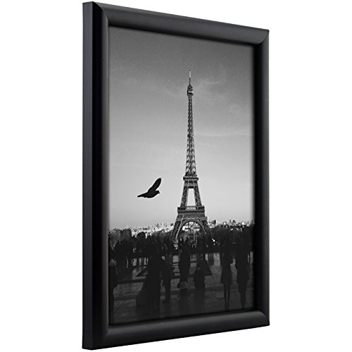 Craig Frames fw2bk2436A 0.765-Inch Wide Picture/Poster Frame in Smooth Finish, 24 by 36-Inch, Matte Black (Picture Poster Frame)
