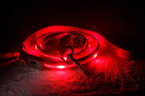 Blazin Safety LED Dog Leash - USB Rechargeable Light, 6 Ft, Waterproof - Avoid Danger - Red