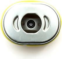 Para GX110 GX120 Filtro de Aire Amarillo: Amazon.es: Coche y ...