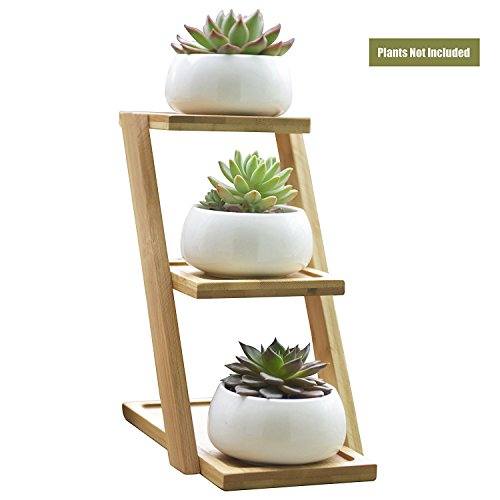 Adorable 3 Tier (SINOVAL Plant Pot Small Round White Ceramic For Succulent/Cactus, Modern Garden Decorative, 3 Tier Bamboo Stand)
