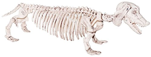 Dachshund Weenie Dog Skeleton Prop, Halloween Decoration, Sunstar (2016 Dollar Iron Man Costume)