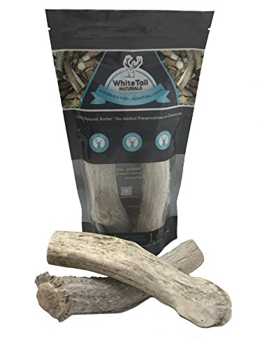 WhiteTail Naturals 1 Pound Pack X-Large, Jumbo XL Antler Dog Chews | # 3 Grade | Extra Large Antlers for Big Dogs | American - A/c Base Moose