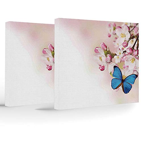 Birthday Decorations,Modern,Modern Stretched and Framed Artwork,Blue Butterfly on Spring Cherry Blossoms Japanese Flower White Pink Orchard Nature
