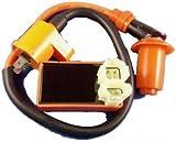 amazon com engine wiring harness for gy6 150cc engine automotive rh amazon com  yerf dog spiderbox wiring harness