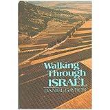 Walking Through Israel, Daniel Gavron, 0395277779