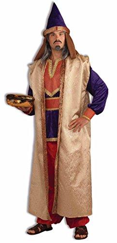Forum Novelties Men's Deluxe Garnet Wise Man Costume,