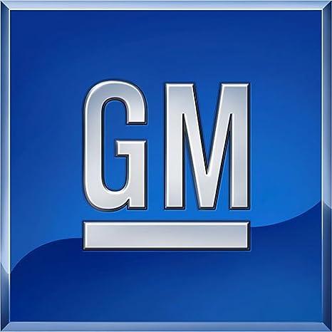 PLATE General Motors 96403865