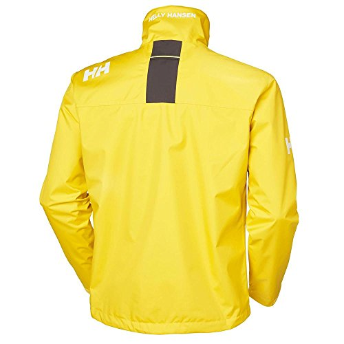 Helly Round Neck Hansen Jacket Men's Sulphur zqwROPz