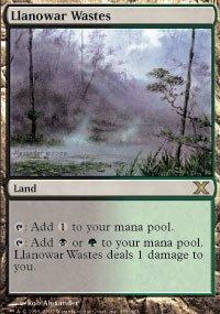 Magic: the Gathering - Llanowar Wastes (355/383) - Tenth Edition