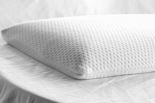 Elite Rest Ultra Slim Sleeper - Firm Memory Foam Pillow, Premium Cotton Cover, Great for Back and Stomach Sleepers, Hypoallergenic - Ultra Thin Low Profile 2.5 Inches
