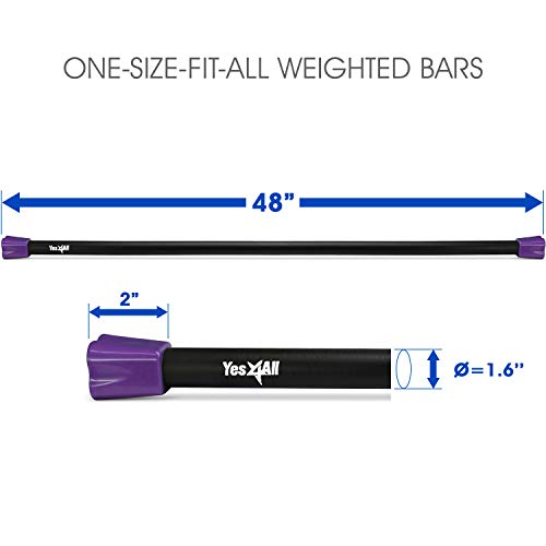 Yes4All Total Body Workout Weighted Bar/Weighted Workout Bar - Great for Physical Therapy, Aerobics and Yoga - Weighted Exercise Bar (20 lbs) by Yes4All (Image #1)