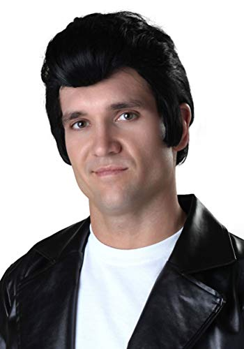 Fun Costumes Adult Grease Danny Zuko Wig Danny Wig from Grease Standard -