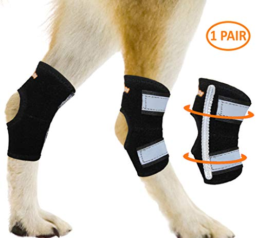 NeoAlly Super Supportive Dog Braces for Rear Leg and Hock Joint with Dual Metal Spring Strips Stabilize Canine hind Legs from Wound, Injury, Sprains, Arthritis