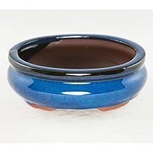 "Oval Mame Shohin Bonsai / Cactus & Succulent Pot 6""x 5""x 2"" - Dark Blue Glazed"