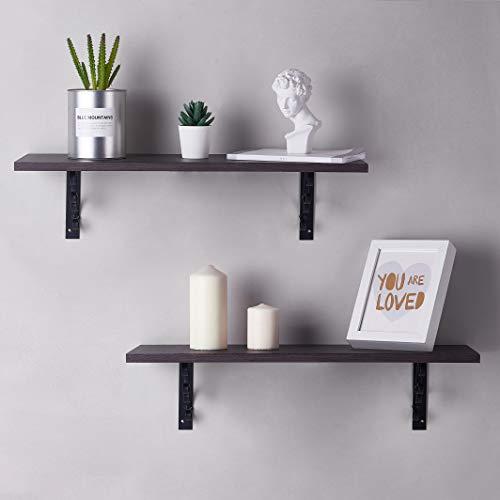 Julie-Home Floating Wall Mountable Display Storage Shelves for Bedroom, Living Room, Bathroom, Kitchen 24 inch Set of 2 Walnut ()