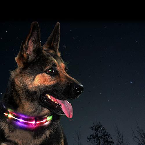 Pet Dog Waterproof Rechargeable LED Flashing Light Loop Collar