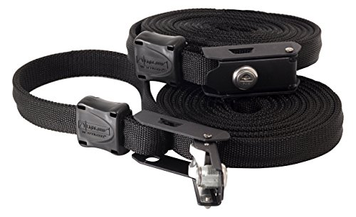 Lightspeed Outdoors Locking Tie Down Security Lockable Strap with Steelcore (Black, 12' - 2 Pack)