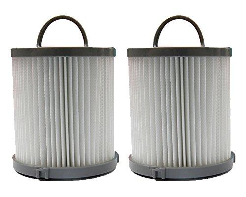 2 Eureka DCF 21 Pleated Dust Cup HEPA Vacuum Filters Sanitai