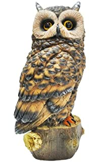 Amazoncom Design Toscano Perching Forest Owl Statue