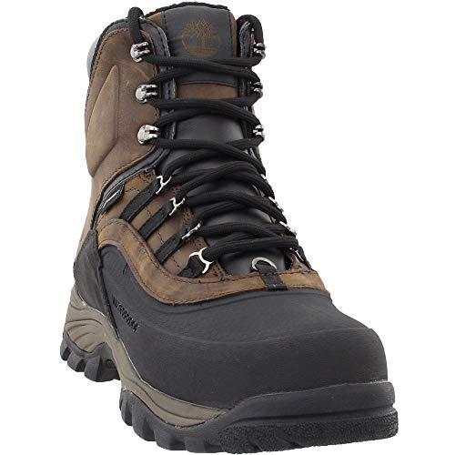 Timberland Men's Chocorua Trail Shell-Toe WP Hiking Boots, Dark Brown - 7.5 M US