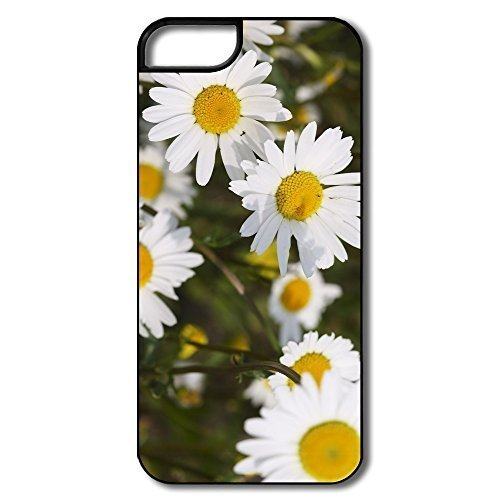 IPhone 5 5S Cases, Beautiful Daisies White/black Cases For IPhone 5S