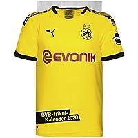 Borussia Dortmund Trikotkalender 2020 34x42cm