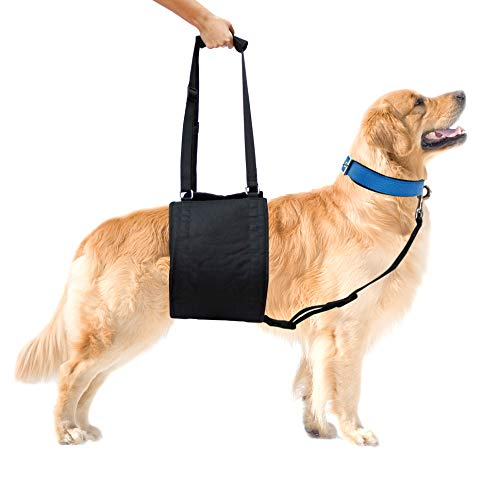 Downtown Pet Supply Innovative Dog Walking Lift Harness Sling, Great Support for Elder and Injured Dogs – Lightweight…