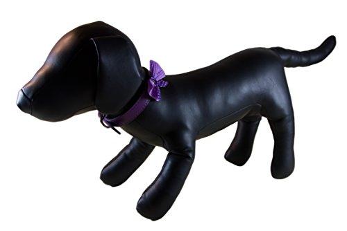 - Petcessory Polka Dot Bow Tie Dog Collar, Purple, Small