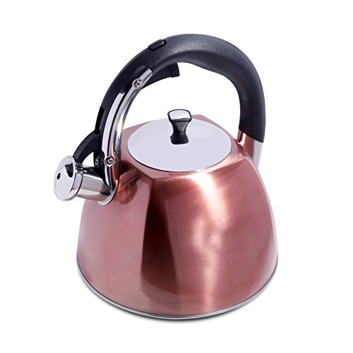 kettle whistling copper - 2