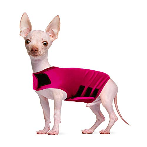 HACHIKITTY Dog Thunder Vest Comfort Calming,Dog Anxiety Wrap and Anxiety Vest,Thunder Shirts for XS Small Medium Large Dogs