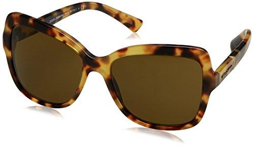 PLAQUE Sonnenbrille Gabbana DG4244 amp; Dolce Brown Havana Marron LOGO Light wxUaIa