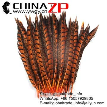 Maslin China Trading Manufacturer CHINAZP Feathers 30 to 35cm Small Size Orange Dyed Lady Amherst Pheasant Feathers for Sale - (Brand: New, Color: Orange, Size: 30-35cm(12-14inch)) ()