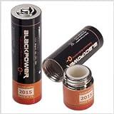 Mignon AA Attrappe Blackpower - Batterie cachette argent