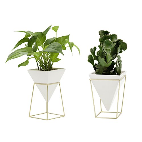 DEFNT Modern Style Desktop Planter Vase & Geometric Container - Great for Succulent Plants, Air Plant, Herbs Cactus Plants, Faux Plants and More, White Ceramic/Brass