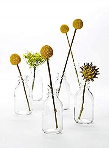 Serene Spaces Living 6 Glass Vintage Mini Milk Bottles - Elegant Vases for Floral Arrangements at Weddings, Events, Parties, 4.25