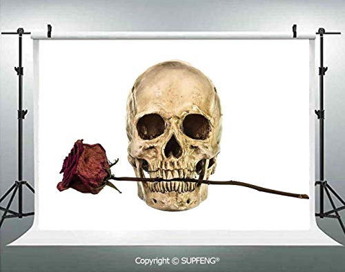 Photo Backdrop Skull with Dry Red Rose in Teeth Anatomy Death Eye Socket Jawbone Halloween Art Decorative 3D Backdrops for Interior Decoration Photo Studio Props -