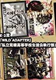 Ani lottery Minekura Characters E Award Clear File Set E-3 Award [WILD ADAPTER] & [private rocky high school student council executive]
